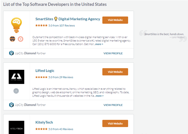 Software Developers In The United States
