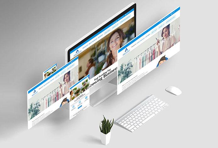 Arcarius Custom Business Development Website