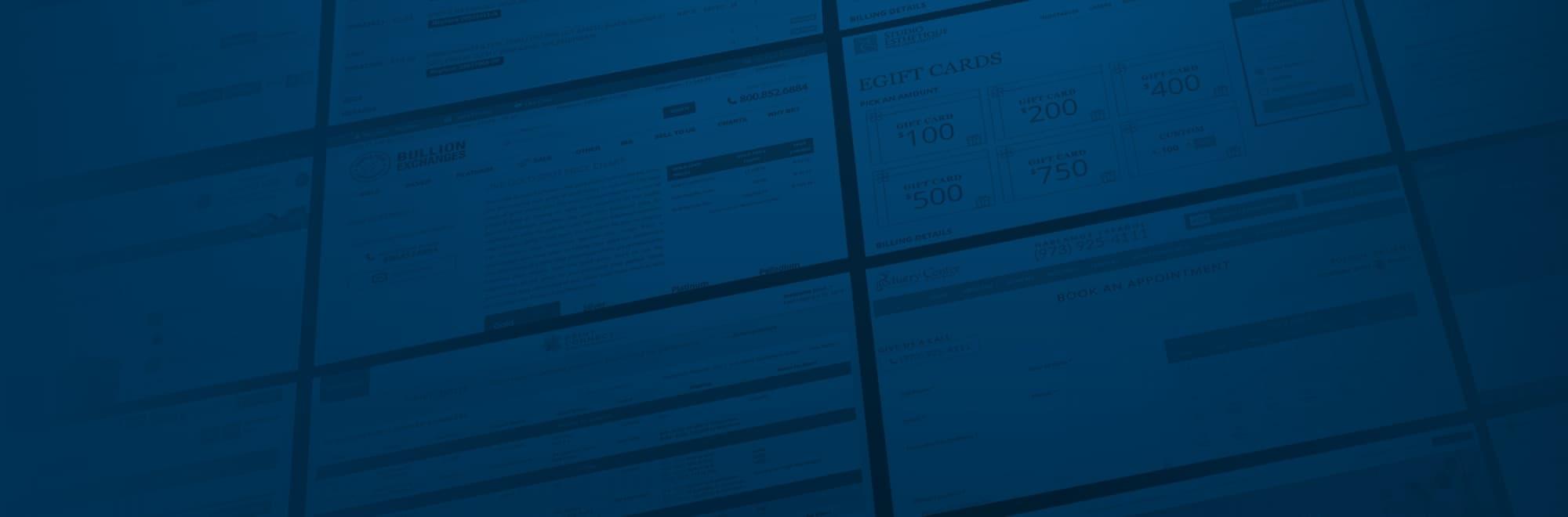 Custom Web Development Service Banner