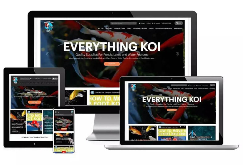 Everything Koi: B2C Website Design
