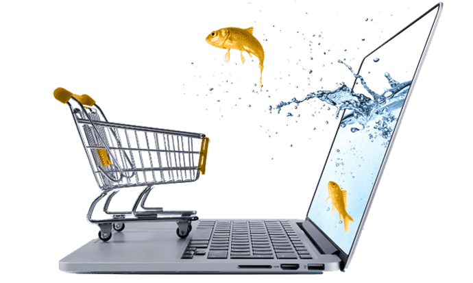 Get an ecommerce website that wins customers
