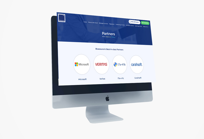 BlueSource WordPress Website