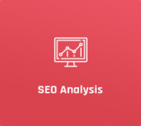 SEO Analysis