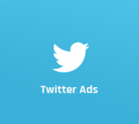 Twitter Ads Marketing & Management