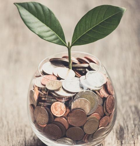 National SEO: Grow Your Business