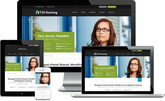 T35 Hosting PPC Marketing Paid Search