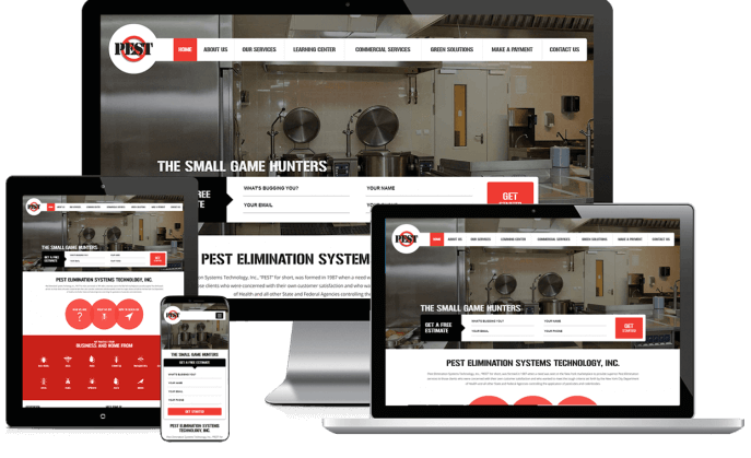 Custom website design for pest elimination