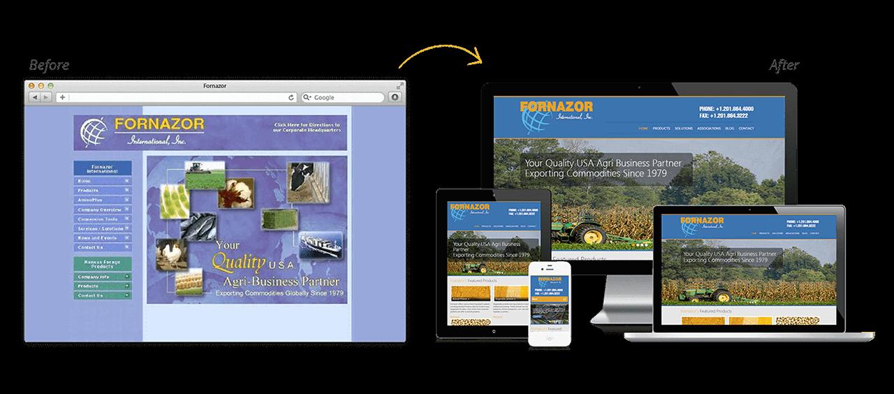 Fornazor International Website Redesign Before After