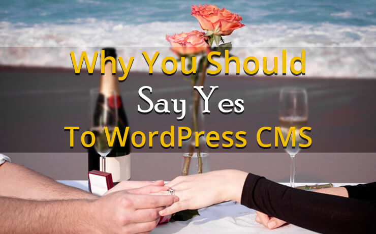 Why You Should Say Yes To WordPress CMS