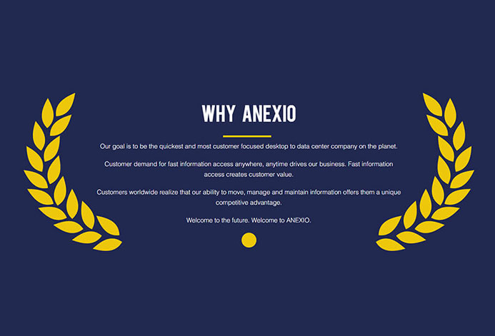 Anexio WordPress Website